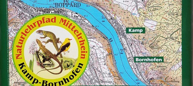Der Naturlehrpfad von Kamp-Bornhofen nach Filsen- Wie man Natur und Lernen optimal verbinden kann!
