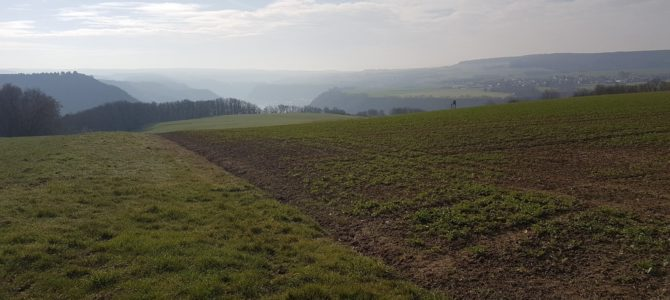Der Rheinsteig von Kestert nach St. Goarshausen – auf den Spuren der Natur und des  ehem. Bergbaus